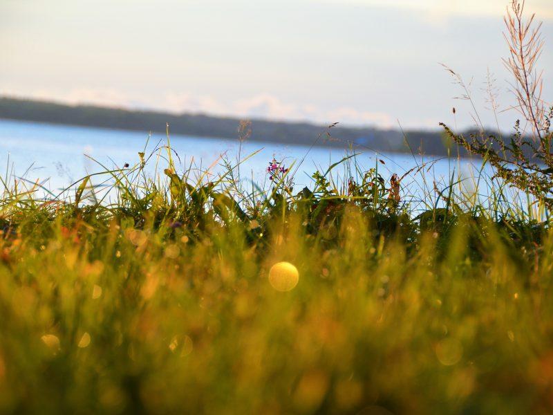 Отдых на Валдае, квадроциклы, озеро Велье, Валдайский национальный парк,