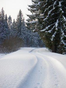 Отдых на Валдае, квадроциклы, озеро Велье, Валдайский национальный парк, P1223025