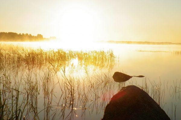 Отдых на Валдае, квадроциклы, озеро Велье, Валдайский национальный парк, P8122326