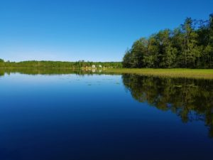 Отдых на Валдае, квадроциклы, озеро Велье, Валдайский национальный парк, 20170629_073029